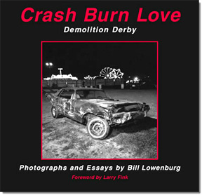 ddl_crashburnlove_book
